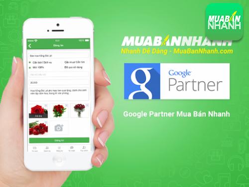Dịch vụ quảng cáo Google với đối tác Google Partner, 118, Minh Thiện, Thiết Kế Nội Thất Đẹp, 07/03/2016 11:11:10